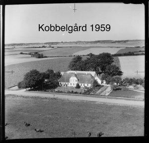 Kobbelgård - 1959