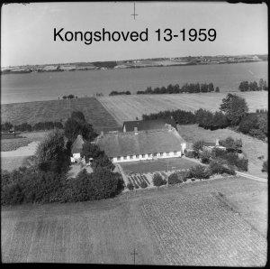 Kongshoved 13 - 1959