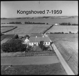 Kongshoved 7 - 1959