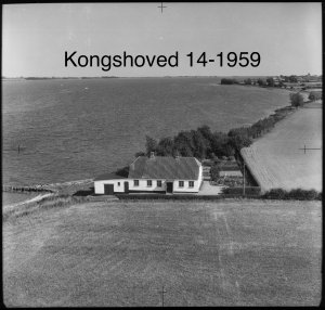Kongshoved 14 - 1959