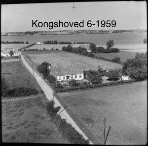 Kongshoved 6 - 1959