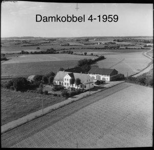 Damkobbel 4 - 1959