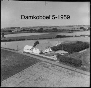 Damkobbel 5 - 1959