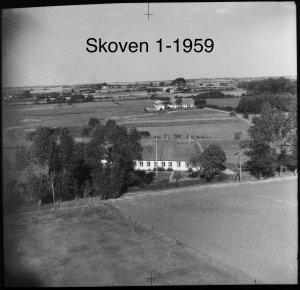 Skoven 1 - 1959