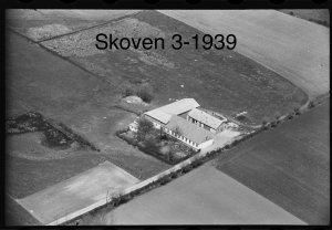 Skoven 3 - 1939