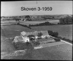 Skoven 3 - 1959