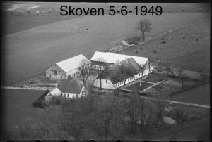 Skoven 5-6 - 1959