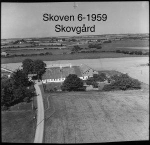Skovgård, Skoven 3 - 1959