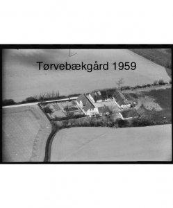 Tørvebækgård - 1959