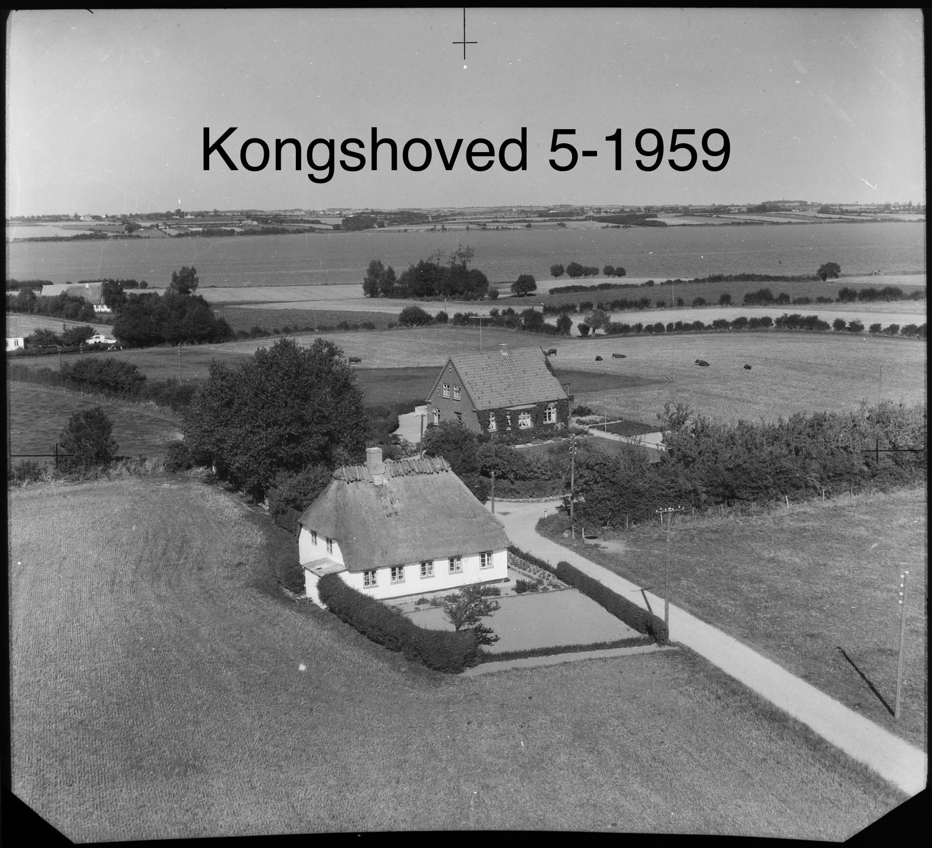 Kongshoved 5 -1959
